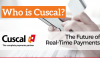 Who is Cuscal? The Future of Real-Time Payments